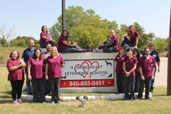 Veterinarian In Wichita Falls Tx A Caring Heart Veterinary Hospital