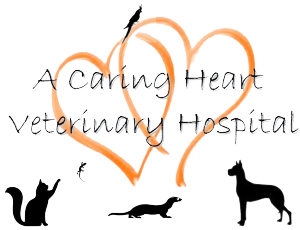 A Caring Heart Veterinary Hospital